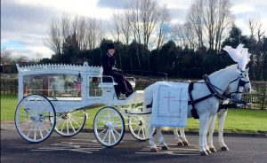 White Horsedrawn Carriage