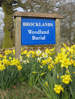 brocklands