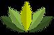 lotusfloer1